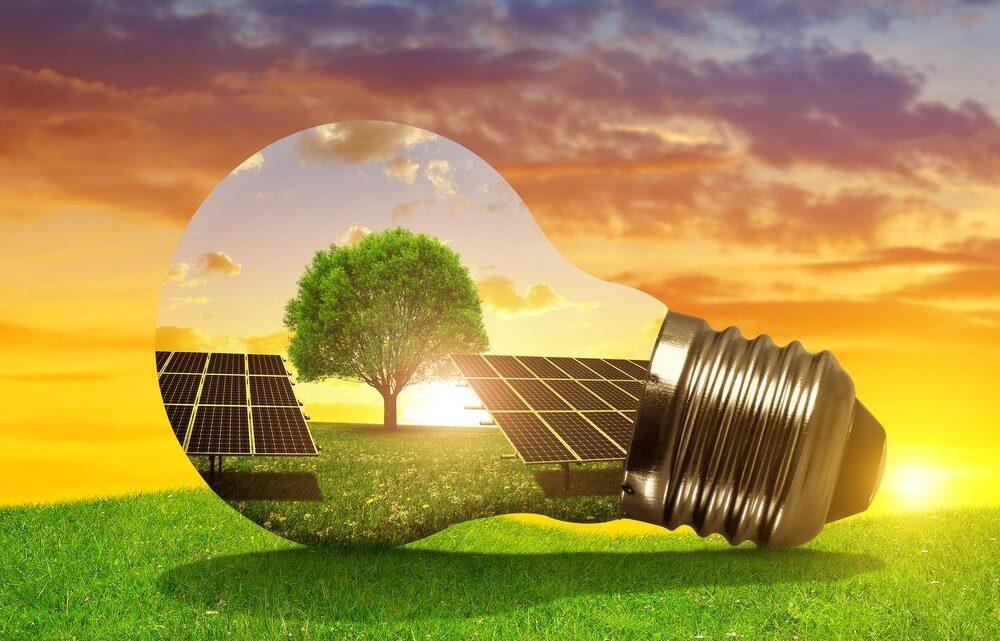 Opter pour des panneaux photovoltaïques pour un habitat écologique